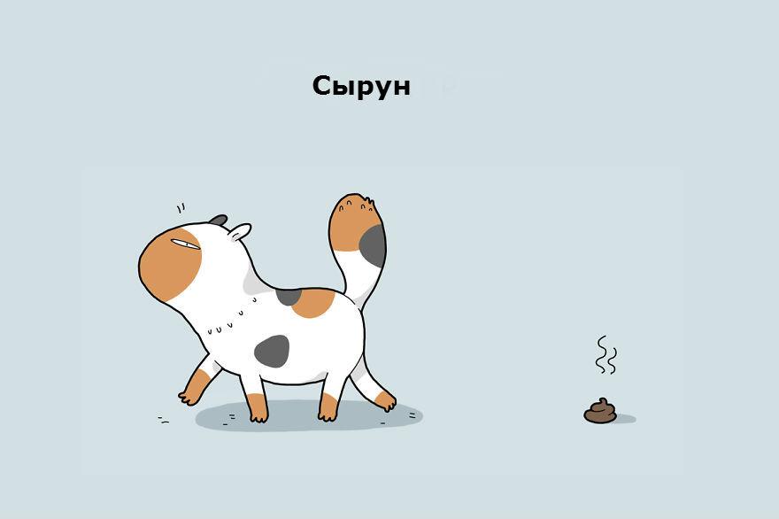 cattypes-005__880_1