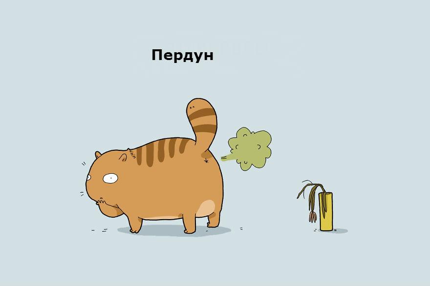 cattypes-012__880_1