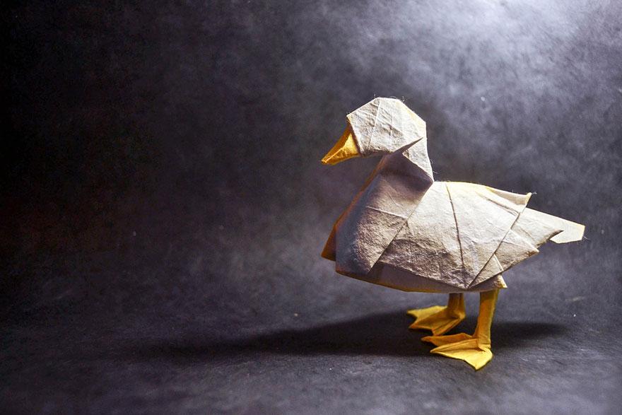 origami-art-gonzalo-garcia-calvo-78__880