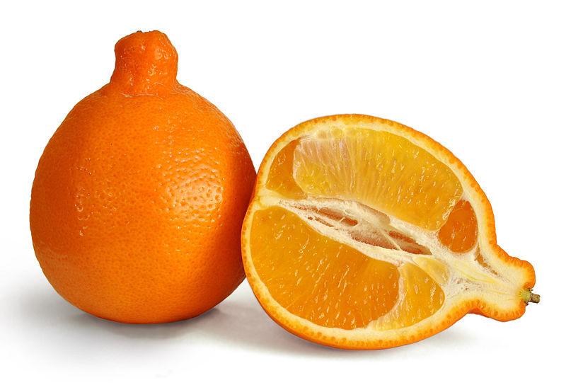 800px-minneola_fruit_3