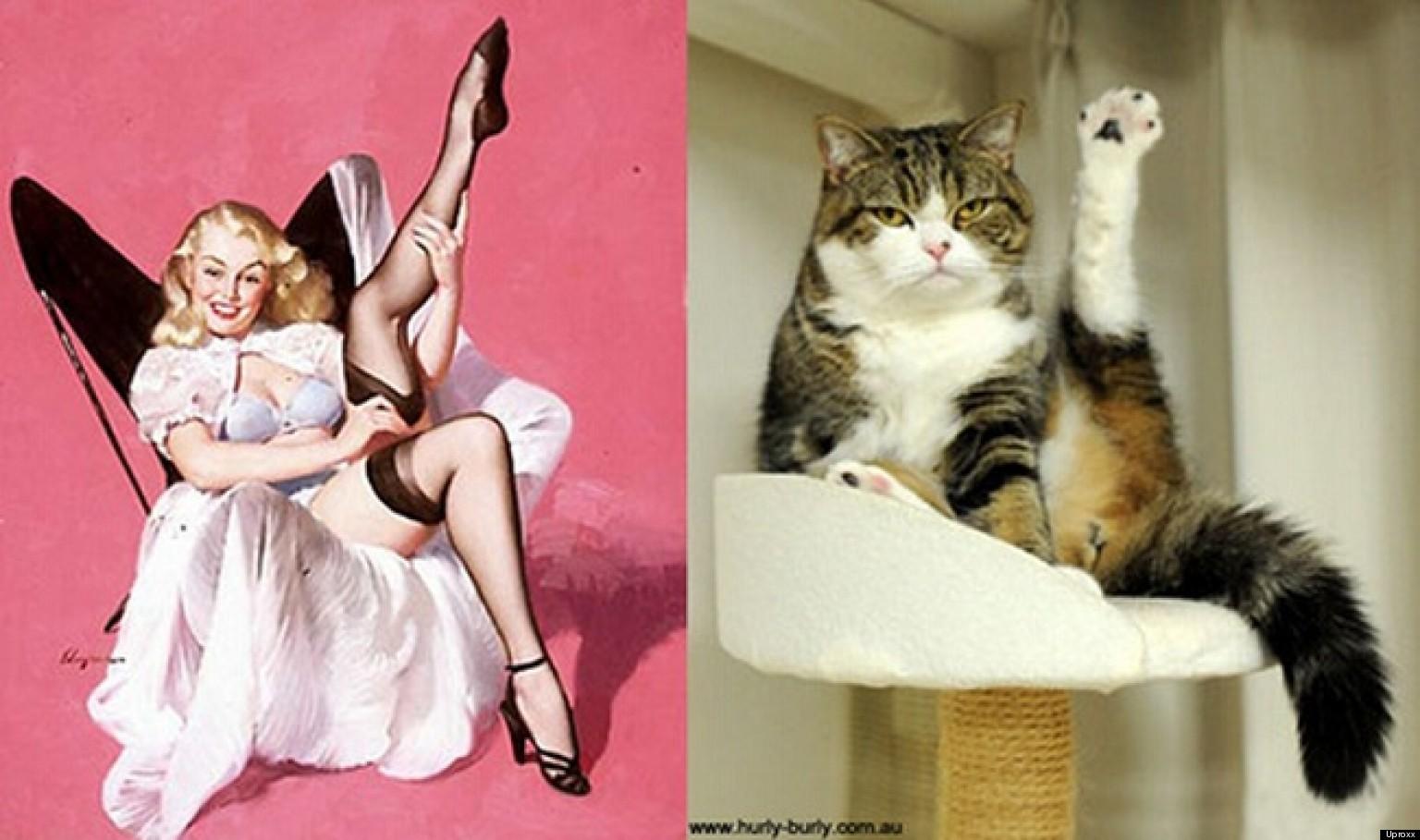 Сеқс с девушкой кошкой 18 фотография