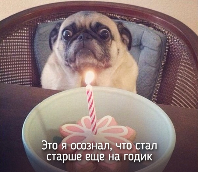 r2_fototelegraf.ru_eto-ya-10_c93cd12f
