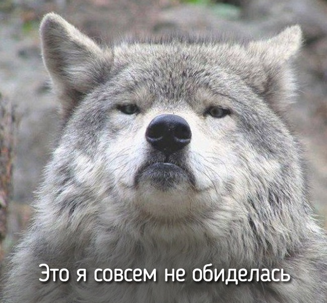 r2_fototelegraf.ru_eto-ya-11_25727b89