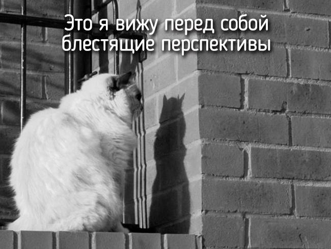 r2_fototelegraf.ru_eto-ya-13_3f7bc2be