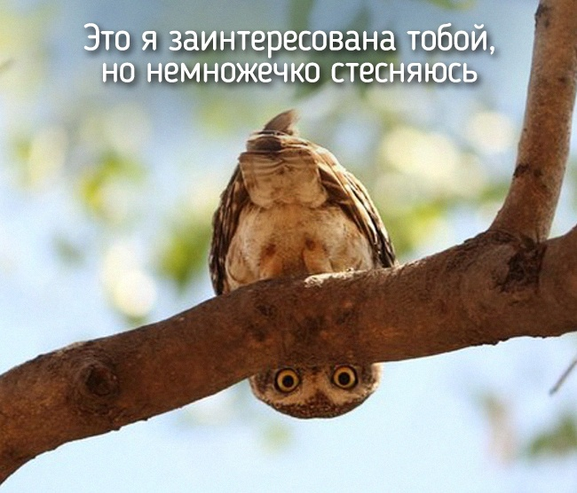 r2_fototelegraf.ru_eto-ya-16_168657cf