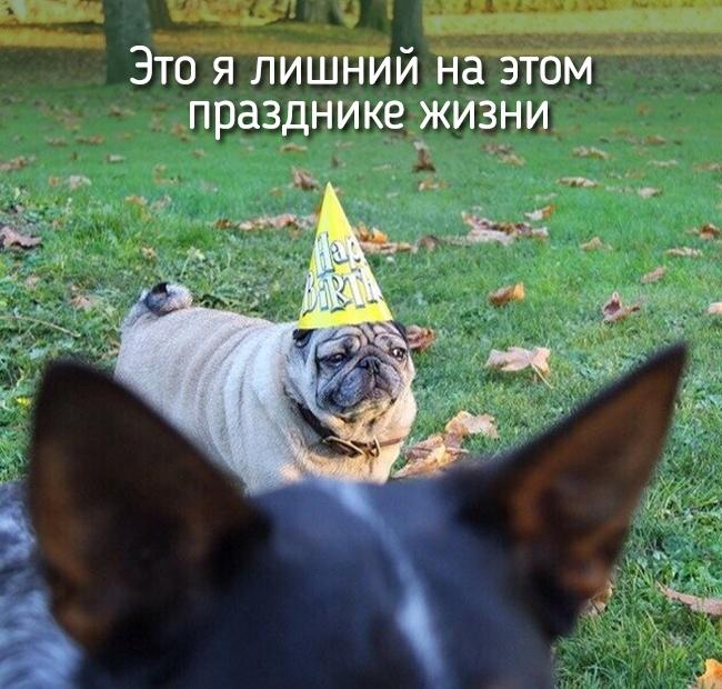 r2_fototelegraf.ru_eto-ya-17_c22d8e32