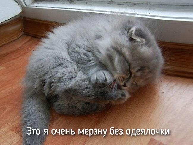 r2_fototelegraf.ru_eto-ya-1_23f6c80f