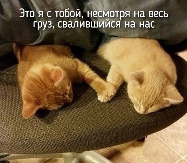r2_fototelegraf.ru_eto-ya-20_1f4d2f5b