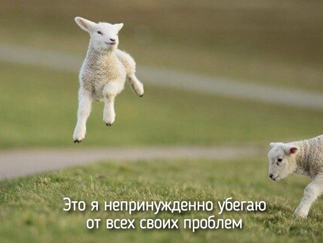 r2_fototelegraf.ru_eto-ya-2_ef4f0789