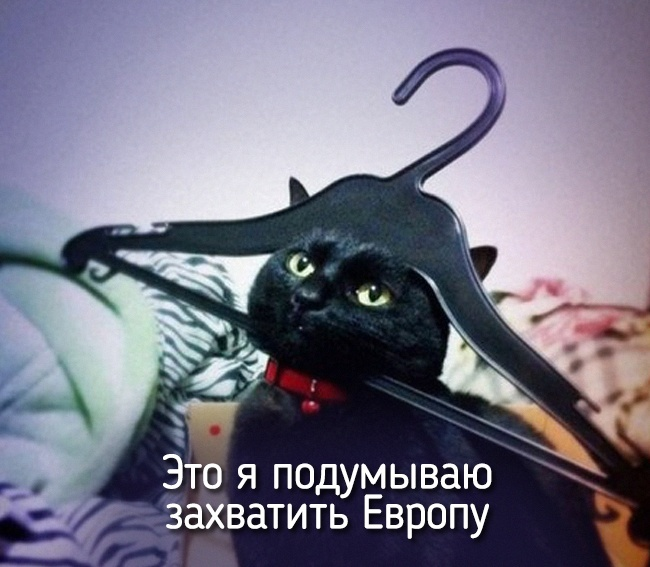 r2_fototelegraf.ru_eto-ya-5_d5135063