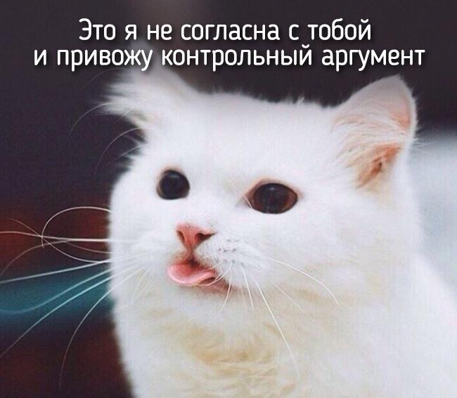 r2_fototelegraf.ru_eto-ya-9_3af86881