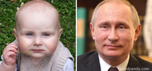 babies-look-like-celebrities-lookalikes-52