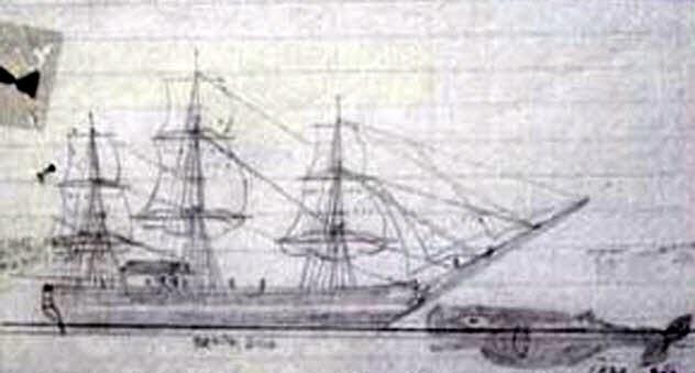 10b-essex-drawing