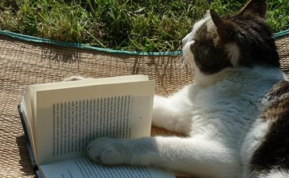 Что читать на английском, если цель — изучение языка?